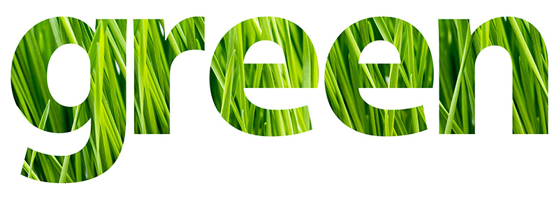 Green grass in letters