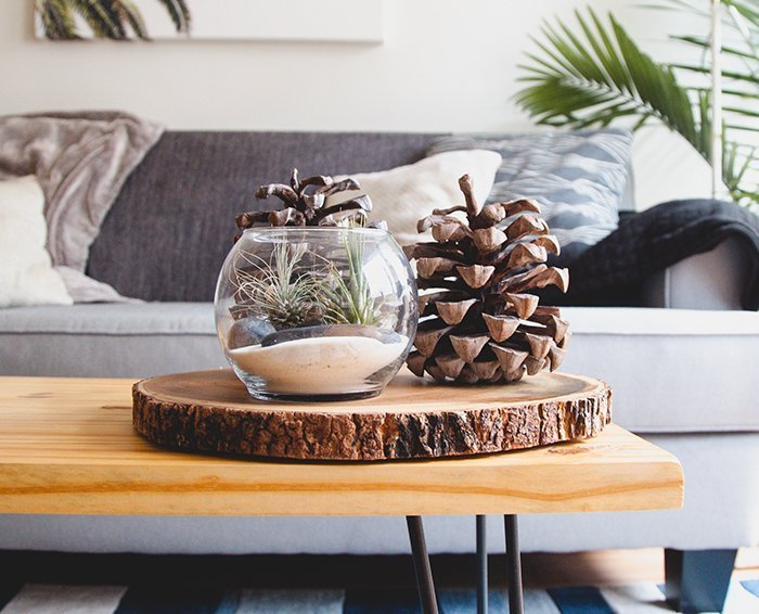 5 Ways to Use Nature to Decorate Your Home