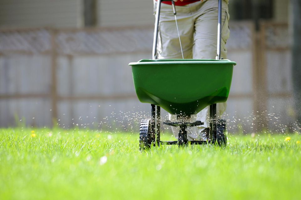 Fertilize like a pro - helpful tips