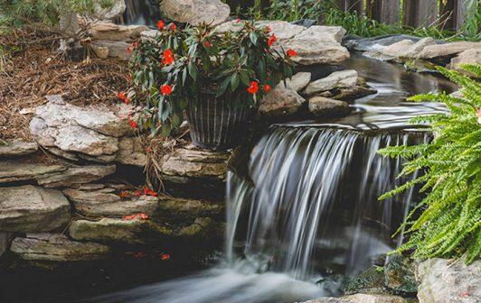 Pond_landscape1